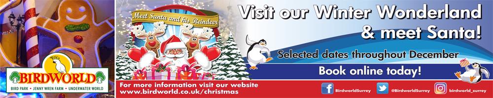 Visit Santa's Grotto at Birdworld this Christmas