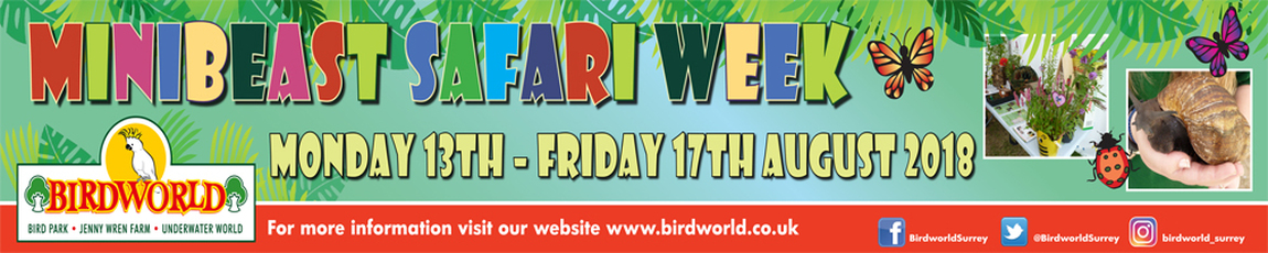 Minibeast Safari Week at Birdworld
