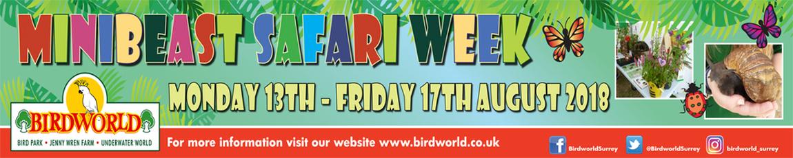 Minibeast Safari Week at Birdworld