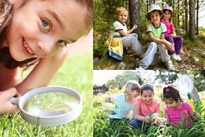 Wild-Life Holiday Day Camps Reigate