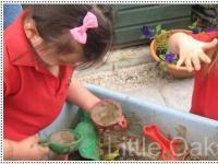 Little Oaks Pre-school Holiday Camp